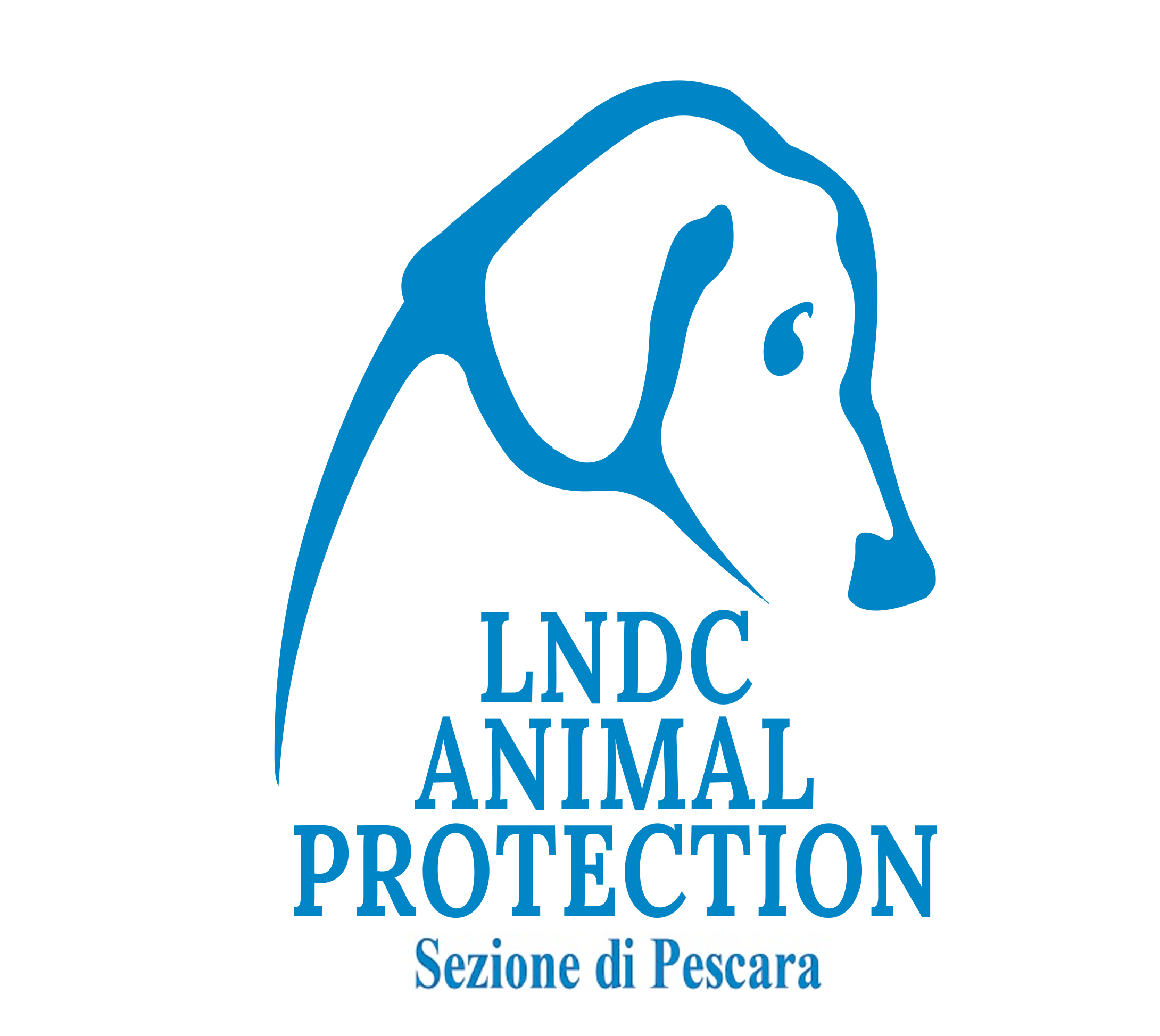 LNDC – Animal Protection – Pescara